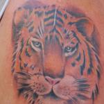 tattoo-ron-12.jpg