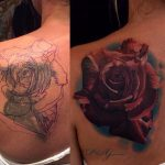 Cover up 12